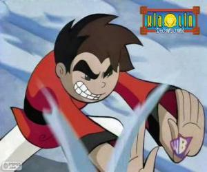 Raimundo Pedrosa, the Xiaolin Dragon of the Wind comes from Brazil puzzle