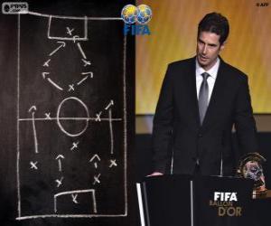 Ralf Kellermann, FIFA 2014 puzzle