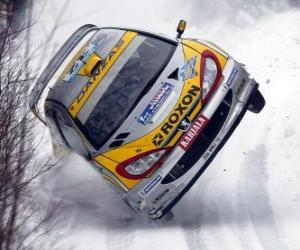 Rally Car on the snow puzzle