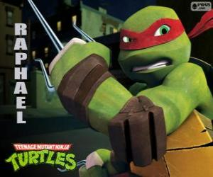 Raphael, the more aggressive ninja turtle with his arms in hand, a pair of Sai, a three-pronged dagger puzzle
