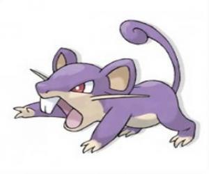 Rattata - Pokémon Normal type, quick attacking rat puzzle