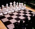 Chessboard with all pieces placed to start the game