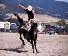 Rodeo - Rider in the saddle bronc competition, riding a wild horse