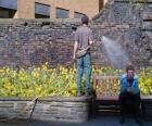 Gardener tending plants, watering
