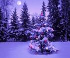 Christmas firs in a snowy landscape with the moon in the sky