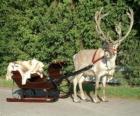 A Santa Claus's reindeer pulling a sleigh