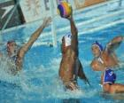 Waterpolo - Player prepared to finish in front of the goalkeeper