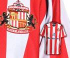 Emblem of Sunderland A.F.C.