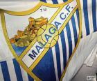 Flag of Málaga C.F
