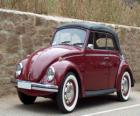 Classic car - Volkswagen Beetle
