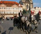 Horse carriage - Carriage
