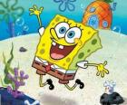 SpongeBob is a sea sponge