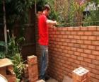 A bricklayer raising a wall