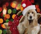 Puppy with Santa Claus hat in a basket