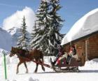 A family in a sleigh pulled by a horse for Christmas