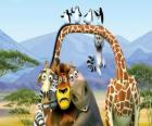 Gloria the Hippo, Melman the giraffe, Alex the lion, Marty the zebra with other protagonists of the adventures