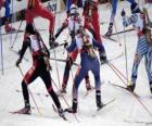 The biathlon in a winter sport of combining cross-country skiing with target shooting.