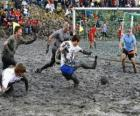 Mud Olympics, or Wattolumpiad, are battling in the marshes of the Elbe River