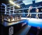 Chess boxing is a hybrid sport which combines boxing with chess in alternating rounds.