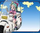 Bulma with his bike