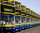 Buses from Dublin in the parking