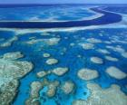 The Great Barrier Reef, coral reefs throughout the world largest. Australia.