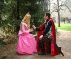 Prince kneeling before the princess gives a rose