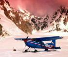 Cessna 185 in the snow