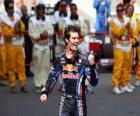 Mark Webber celebrated his victory at Circuit de Catalunya, Spain Grand Prix (2010)
