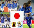 Selection of Japan, Group E, South Africa 2010