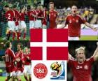 Selection of Denmark, Group E, South Africa 2010