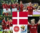 Selection of Denmark, Group E, South Africa 2010