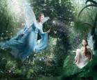Two fairies in the forest