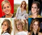 Emma Watson was known for her role as Hermione Granger, one of the three stars of the Harry Potter film series