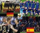 Germany - Spain, semi-finals, South Africa 2010