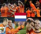 Netherlands South Africa 2010 finalist