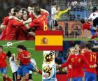 Spain South Africa 2010 finalist