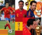 Xavi Hernandez (The baton) Spanish National Team Midfielder