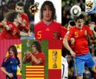 Carles Puyol (The head of Spain) Spanish team defense