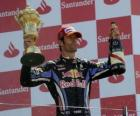 Mark Webber celebrated his victory at Silverstone, Grand Prix of Great Britain (2010)