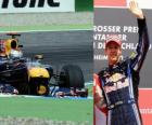 Sebastian Vettel - Red Bull - Hockenheim, German Grand Prix (2010) (Ranked 3rd)
