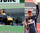 Sebastian Vettel - Red Bull - Hockenheim, German Grand Prix (2010) (Ranked 3rd)