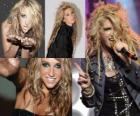 Kesha is an American singer and songwriter.