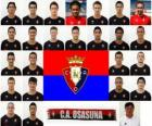 Team of CA Osasuna 2010-11