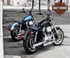 Two Harley davidson