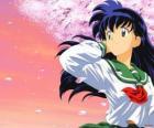 Kagome Higurashi is the reincarnation of the priestess Kikyo