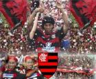 Ronaldinho signed for Flamengo