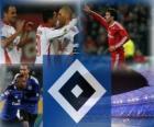 Hamburg SV, the German football team