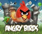 Angry Birds Rovio is a video game. Angry birds attack the pigs who steal eggs