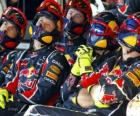 Red Bull mechanical watching the race